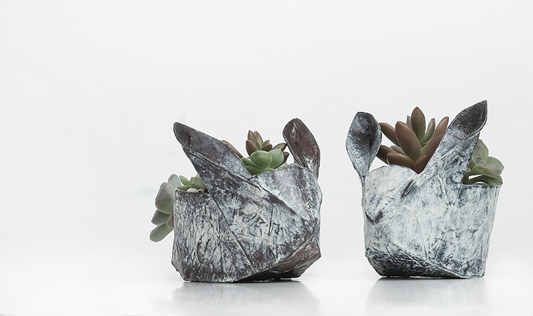 Kids' STEAM: Origami and Seeds!